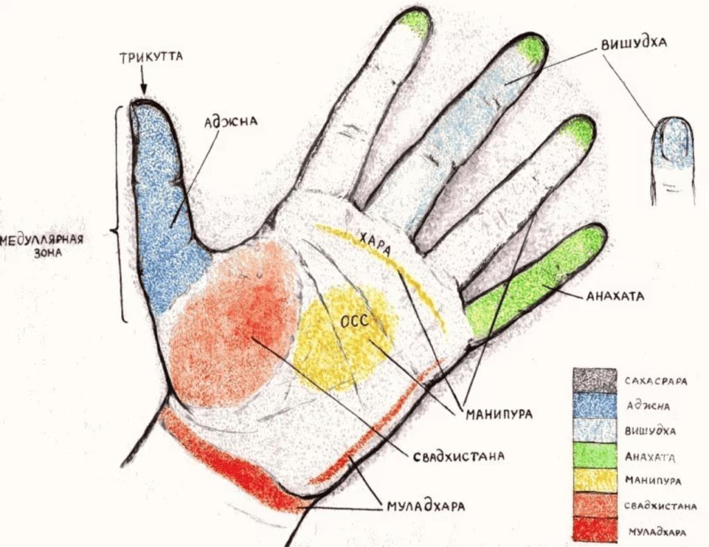 энергетические каналы пальцев рук