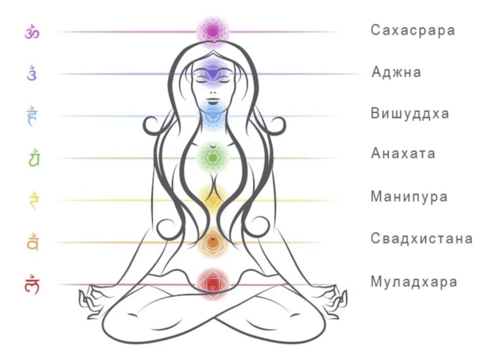 Амплитудно-частотная характеристика и активность первой чакры (муладхара)
