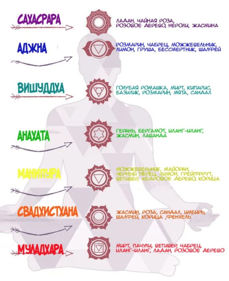 За что отвечает первая чакра муладхара и ее стихия?